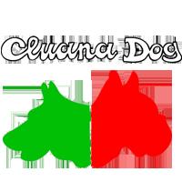 Cluana Dog